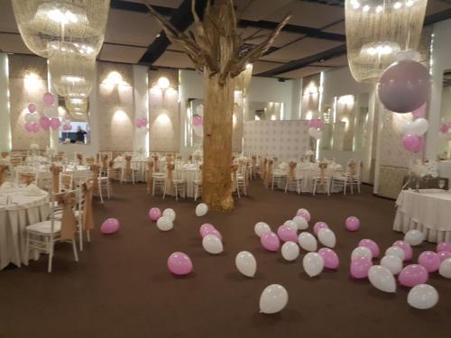 baloane cu aer 1