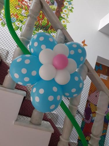 flori din baloane atasate 4